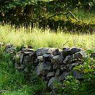 Stone Wall by artgoddess