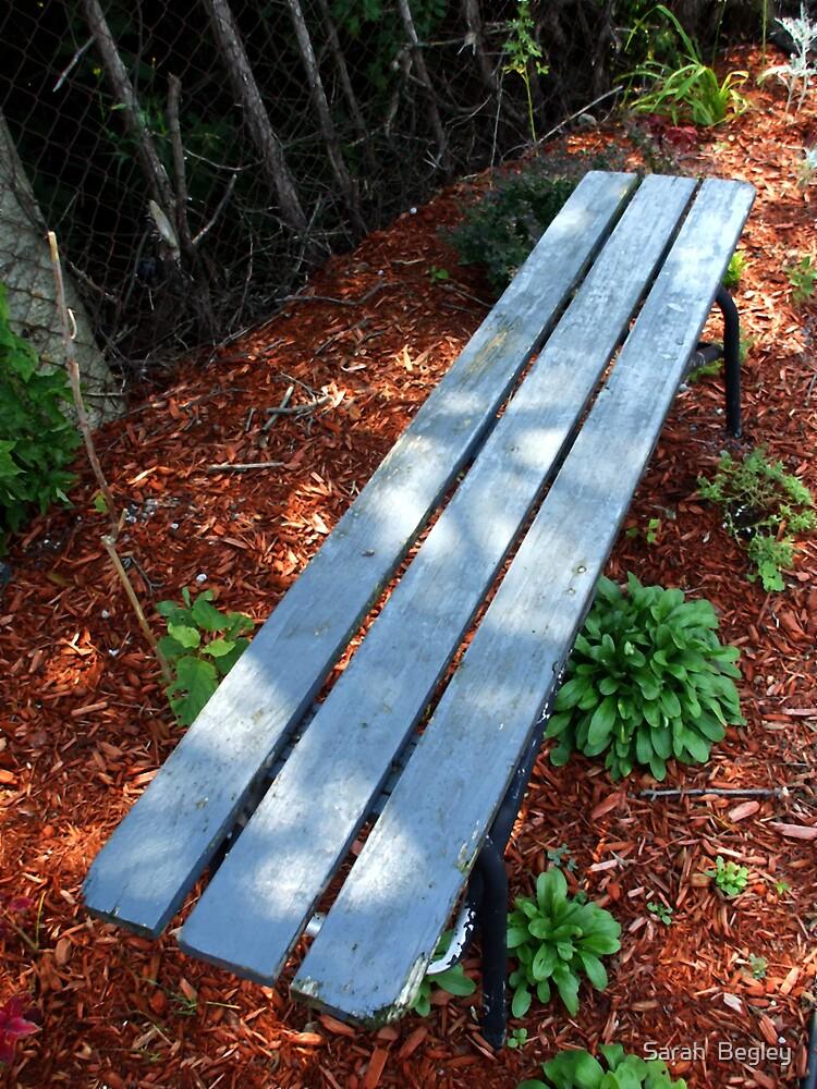 Blue Bench by Sarah  Begley