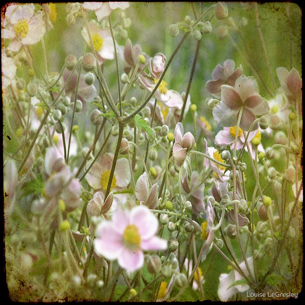 { summer flowers } by Louise LeGresley