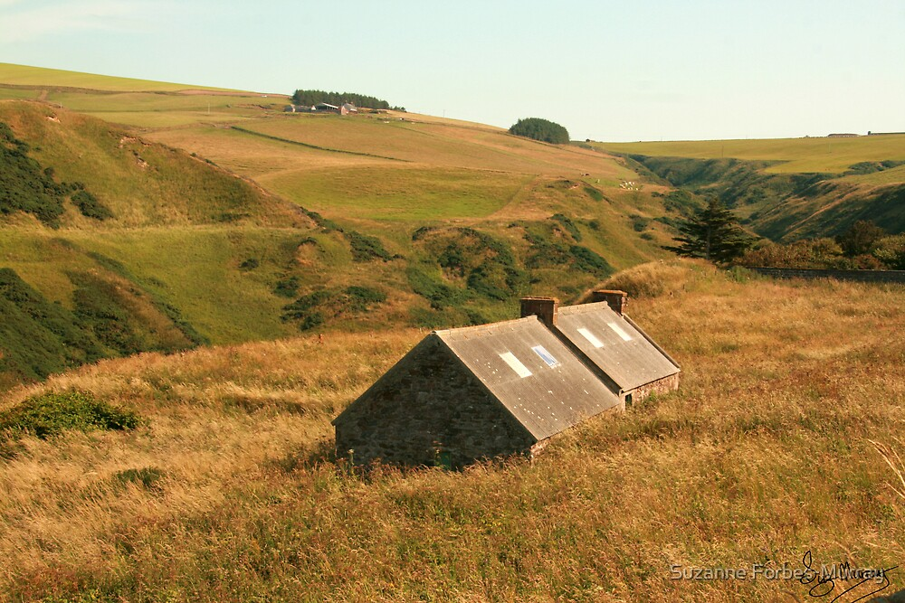 Old Steading Gamrie by Suzanne Forbes-Murray