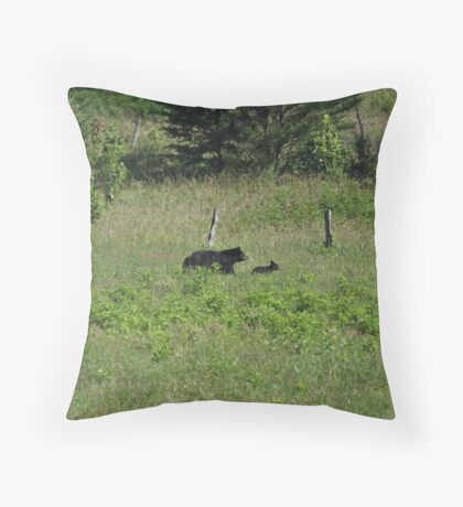 Mountain Beauty Throw Pillow