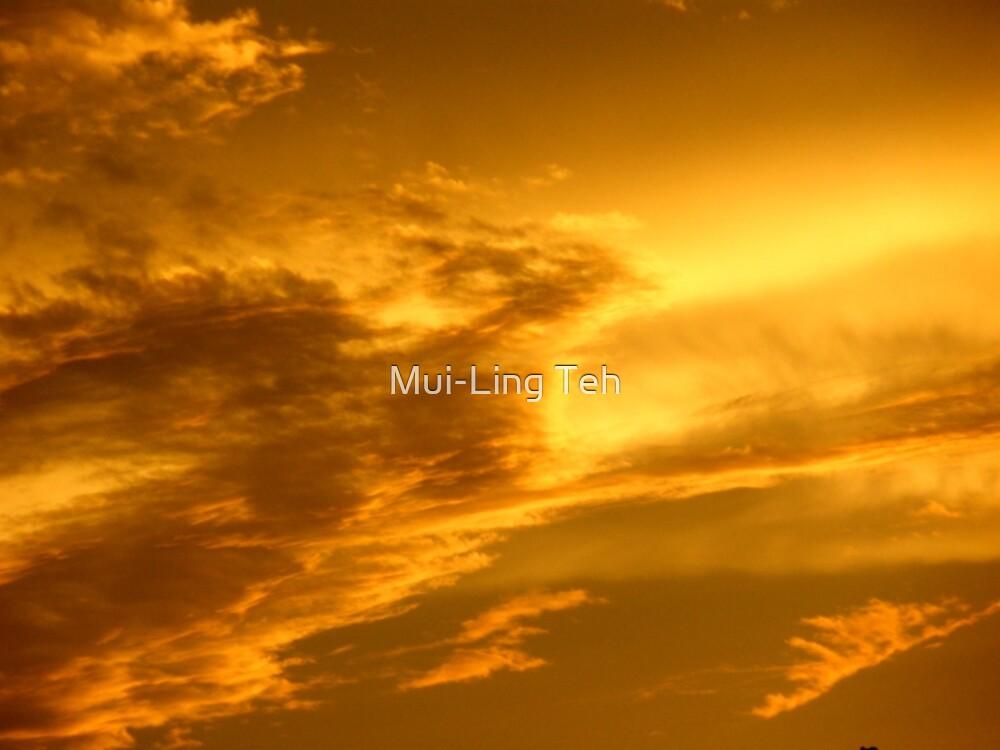 Phoenix Cloud by Mui-Ling Teh