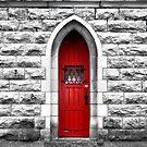 The Red Door by Nori Bucci