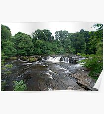 Aysgarth falls, the top end! Poster