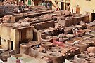 Chouara Tannery, Fes, Morocco by Carole-Anne
