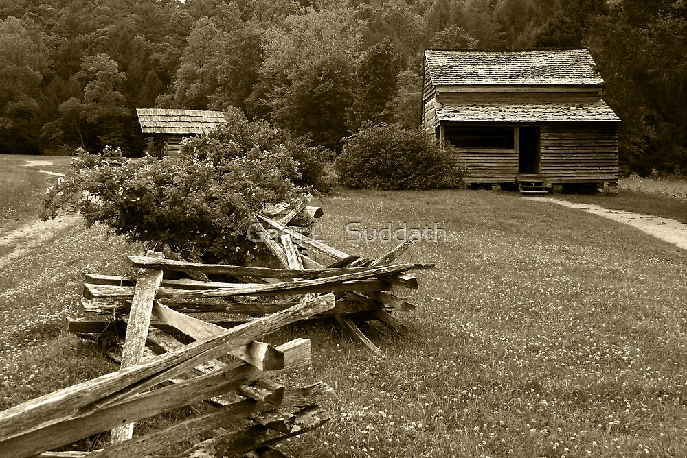 Mountain Home by Gary L   Suddath