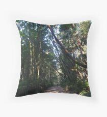 Main Trail 1 Throw Pillow