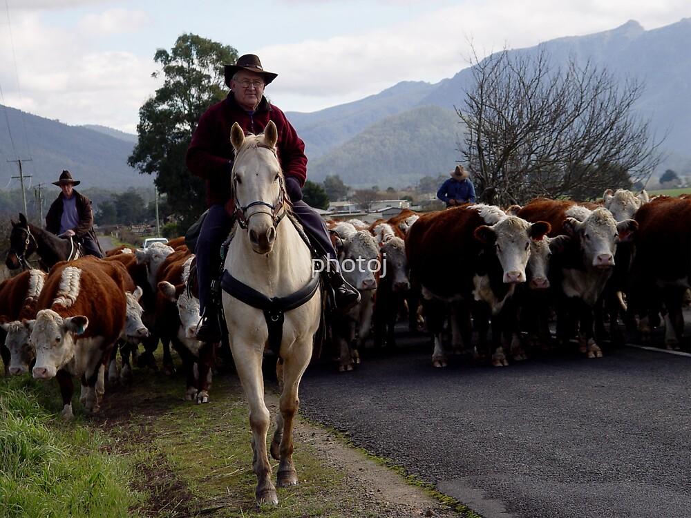 photoj Farmers- 'Cattle On The Move' by photoj