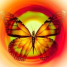 """Butterfly 6 (from """"Butterflies"""" collection) by EvaMarIza"""