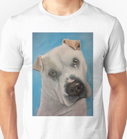 Meet Flash T-Shirt