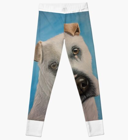 Meet Flash Leggings