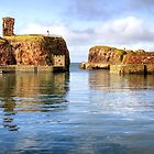Victoria Harbour & Dunbar Castle, Scotland by Christine Smith