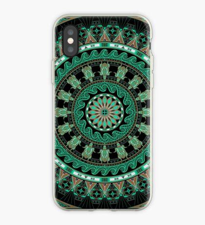 The Turtle (Keya)  iPhone Case