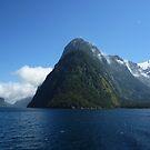 Milford Sound, New Zealand by Susanne Schmitz