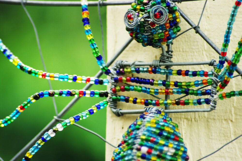 The best kind of spider by Deidre Cripwell