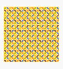 Geometric Circle Pattern. Abstract Geometric Modern Background. Photographic Print