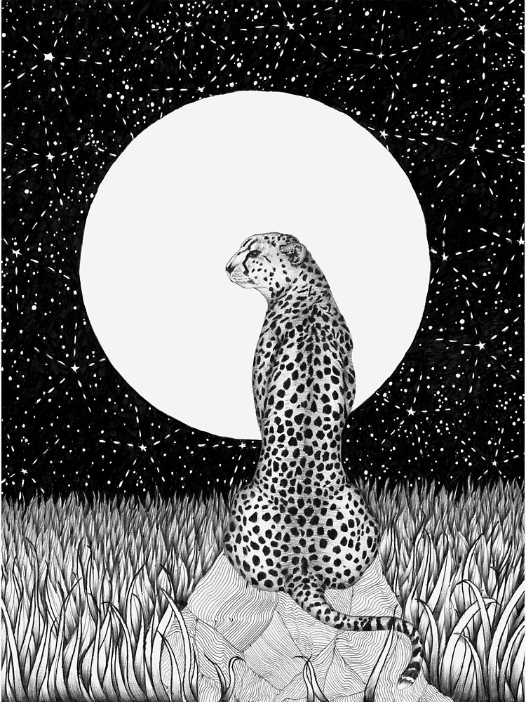 Cheetah Moon by ECMazur
