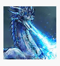Ice dragon Photographic Print