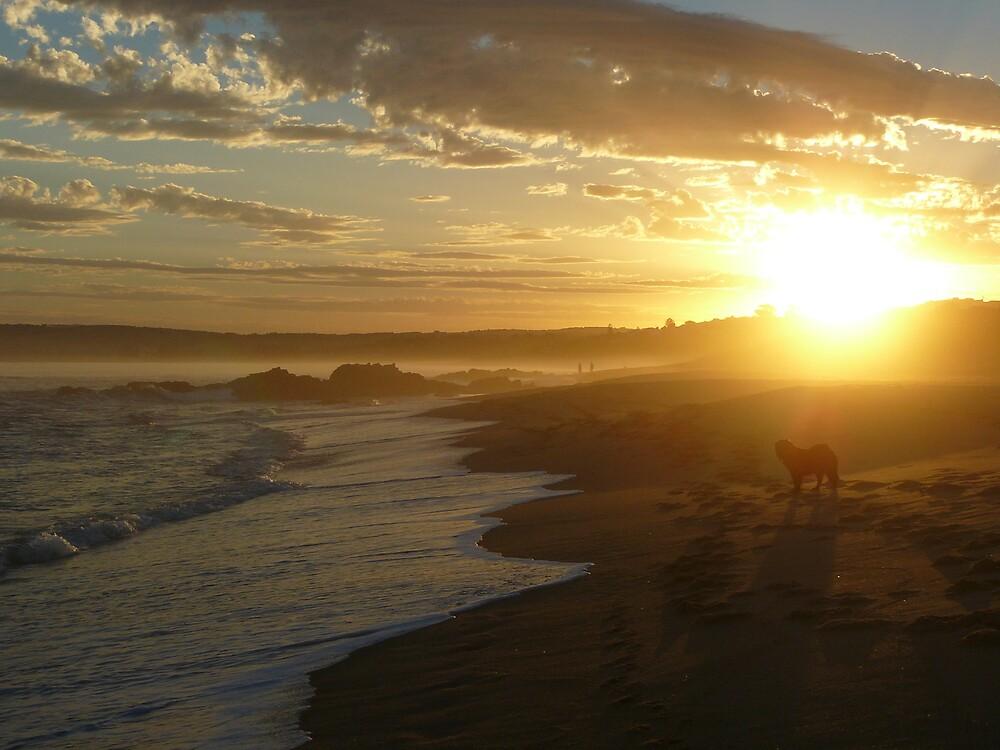 Surreal Misty Sunset- Chiton Rocks Beach by Shelley Karutz