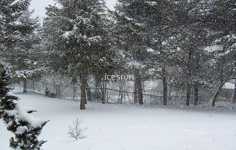 Snow by icesrun