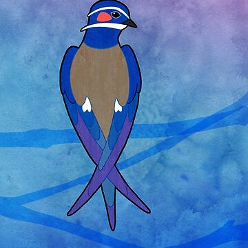 Whiskered Treeswift (Hemiprocne comata) by Cedarseed