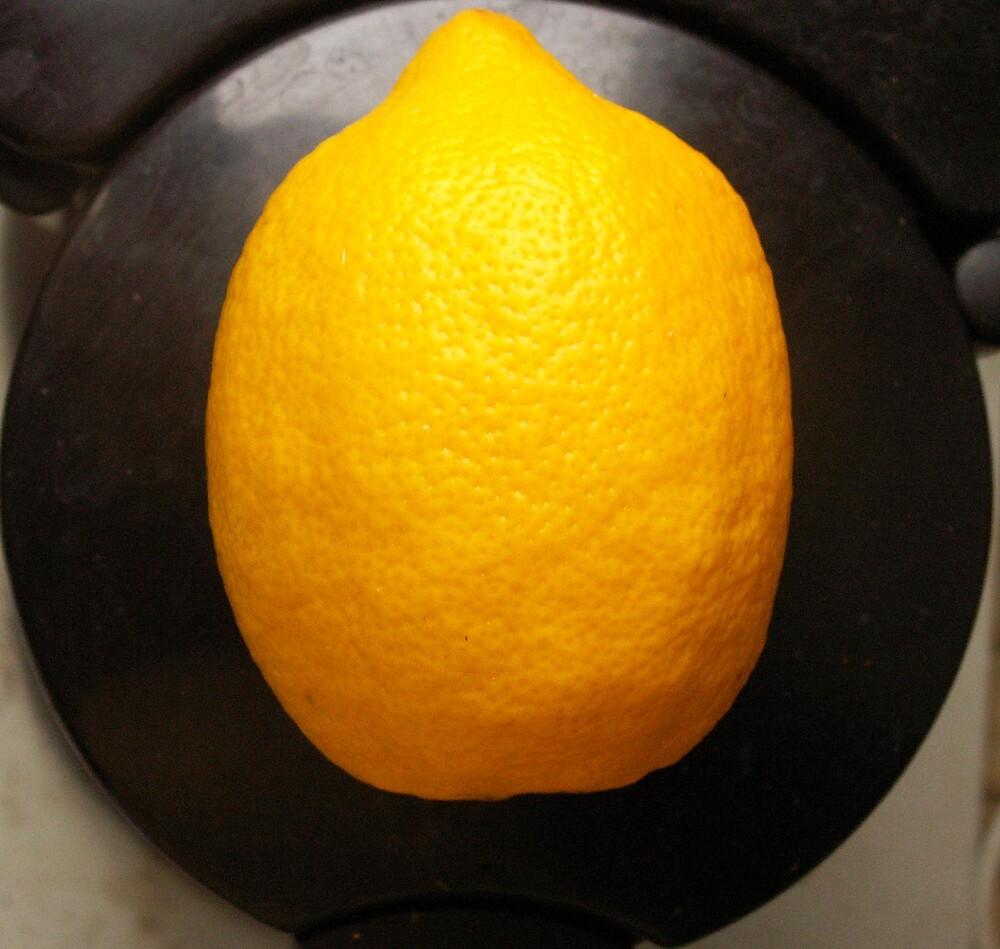 wanderfull lemon by DukeAbbaddon