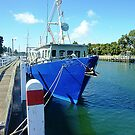 Blue and ready to go - Port Fairy, Vic. Australia by EdsMum
