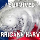 I Survived Hurricane Harvey by EyeMagined