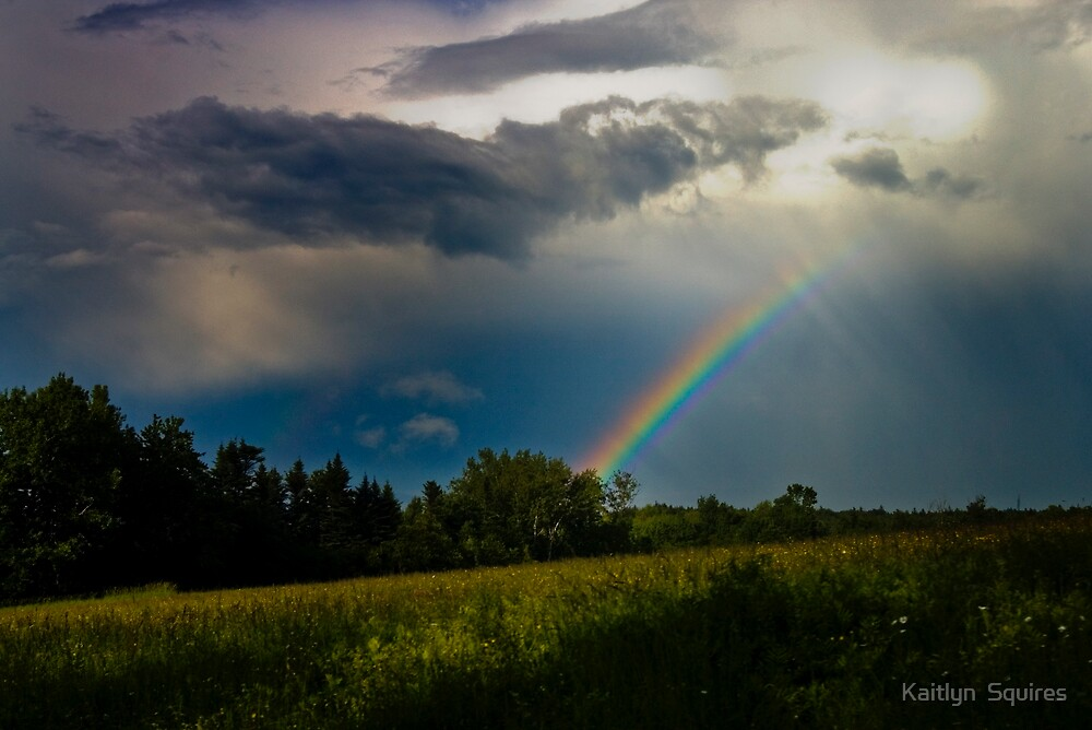 Windsor Rainbow by Kaitlyn  Squires