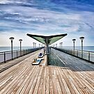 """"""" Beach Parallel """" by Richard Couchman"""