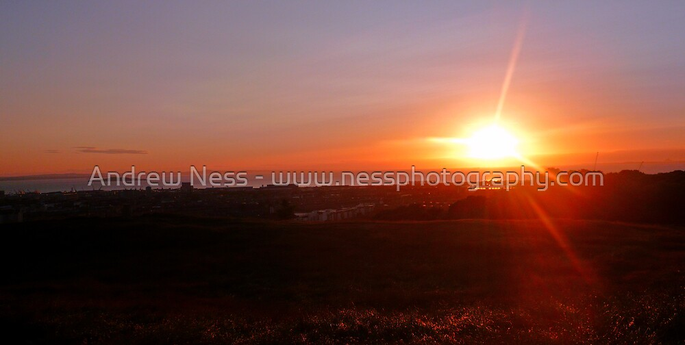 A Burst of Sunshine by Andrew Ness - www.nessphotography.com