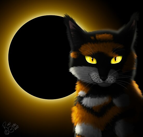 warrior cats sol posters by riverbelleart redbubble