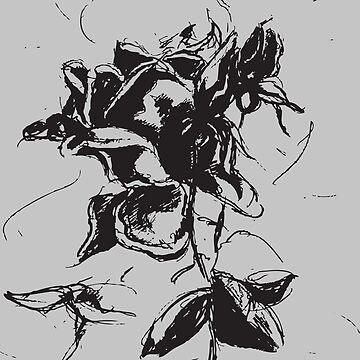 Black rose by zeljkica