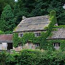 Yorkshire Cottage by Dave Law