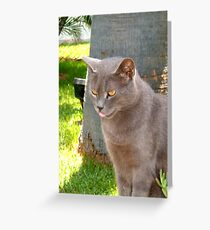 Licking those lips Greeting Card