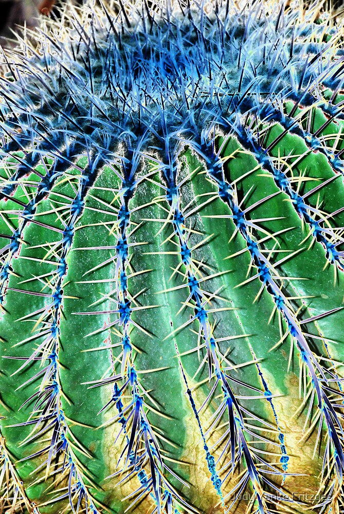 Electrified Cactus by Judy Yanke Fritzges