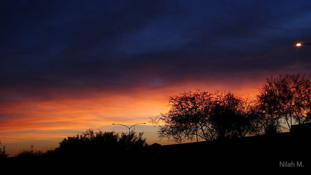 Backyard Sunset by Nilah M.