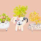 «Suculentas del erizo del gato perro Kawaii» de Ruta Dumalakaite