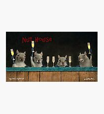 Will Bullas print / Squirrel's night out... Photographic Print