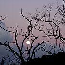 Moonset/Sunrise by Alex Evans