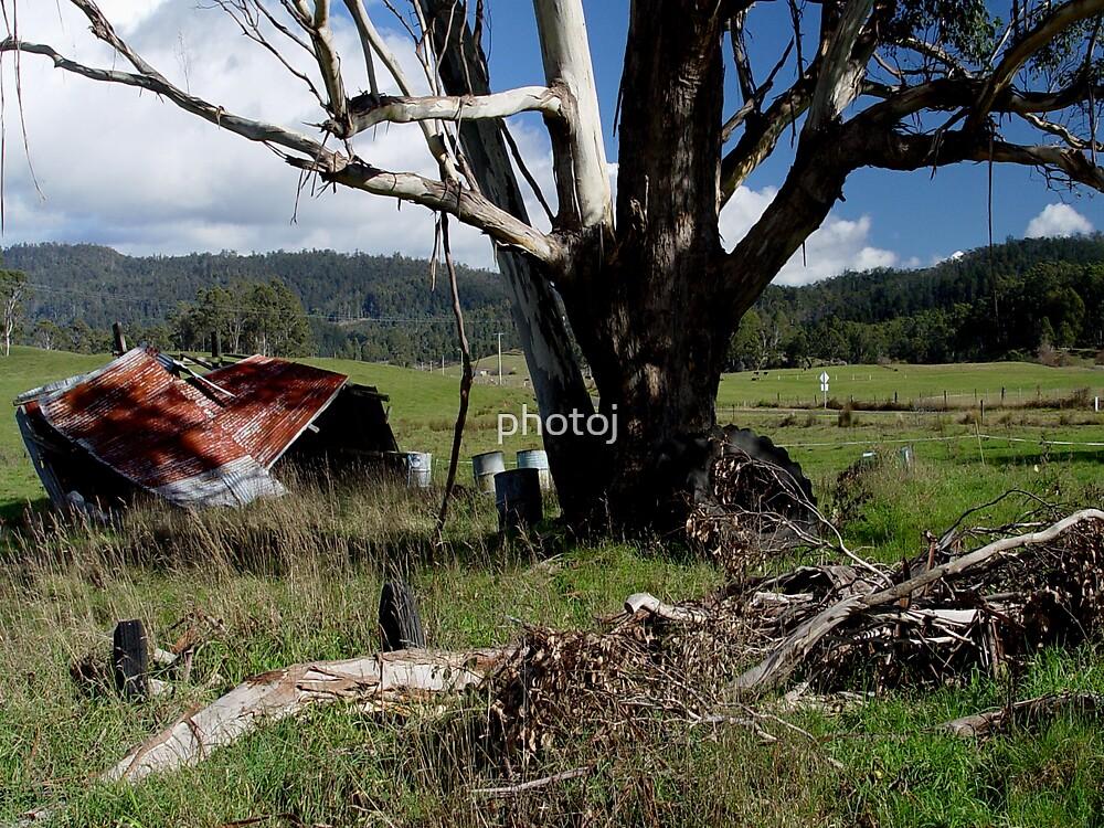 photoj Country Landscape by photoj