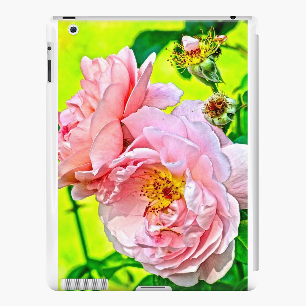 Pretty in pink iPad Cases & Skins