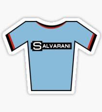 Retro Jerseys Collection - Salvarani Sticker