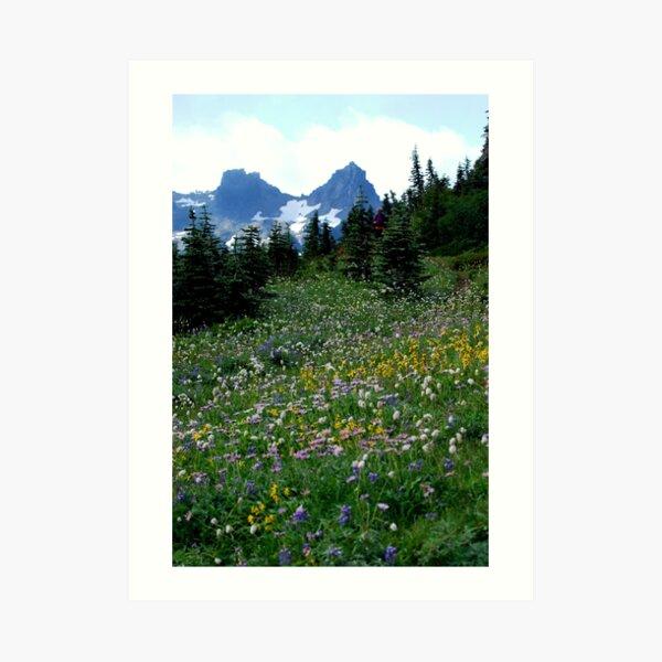 The Mountain Garden Art Print