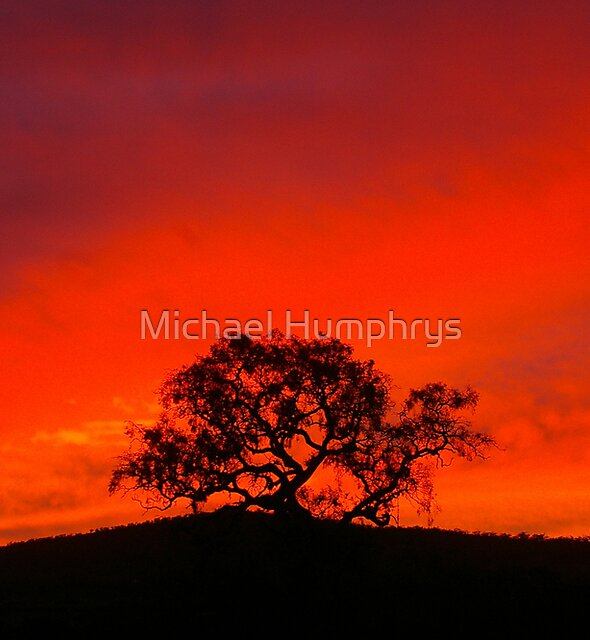 Stunning Skyscape by Michael Humphrys