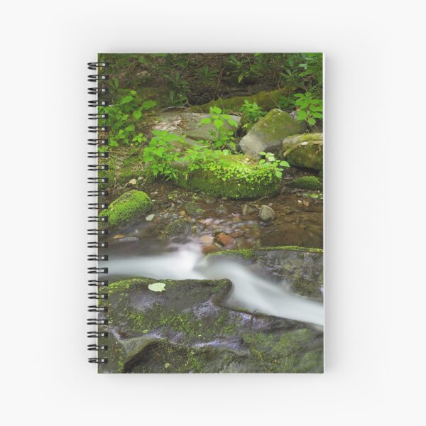 Small Pleasures      Spiral Notebook