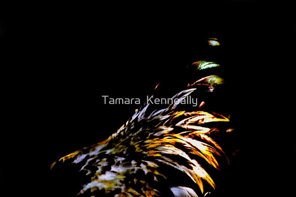Chicken IV by Tamara  Kenneally