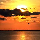 Sunset Over the Sound, Duck, NC by CreatorsBeauty