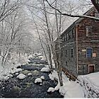 -The Old Mill On Stevens' Brook- by T.J. Martin