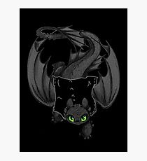 Toothless the Dragon Pocket Pal Photographic Print